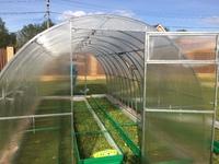 Оцинкованная теплица «VIP» арочного типа с дугами-фермами